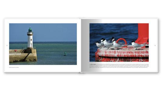 Pages intérieures de l'ouvrage Belle-Île-En-Mer