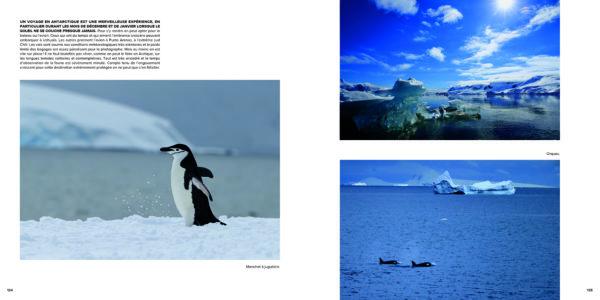 Pages intérieures de l'ouvrage Paysages et faunes remarquables, de l'Arctique à l'Antarctique