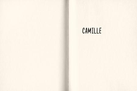 Pages intérieures de l'ouvrage les Bijoux voyageurs